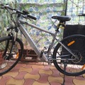 For Sale: Electro Town master e bike for sale
