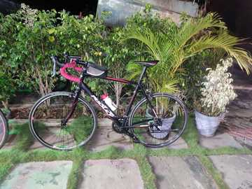 For Sale: Ridley domocles 1 2017