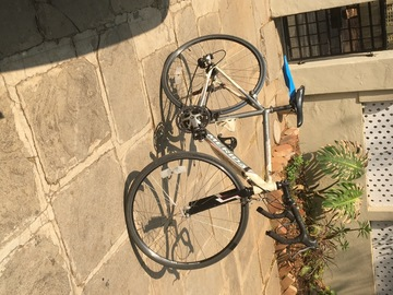 For Sale: 50 CM's Road Bike Marie's Road 903