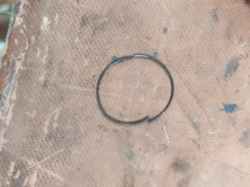 For Sale: Free Hub Spring Ring