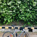 For Sale: Hero lectro c6 electric bike only 1month old