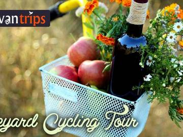 Events: Vineyard Cycling 23rd September