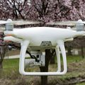 For Rent: DJI Phantom 4 with 3 extra batteries for Rental at Manali