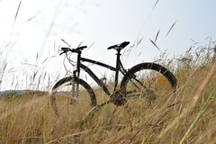 For Rent: Btwin Rockrider 340