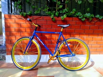 For Sale: Scolarian Fixed Gear Fixed Speed Bike