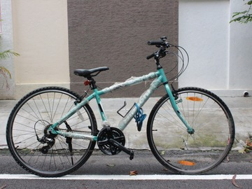 For Sale: BIANCHI SPILLO RUBINO (2016) model