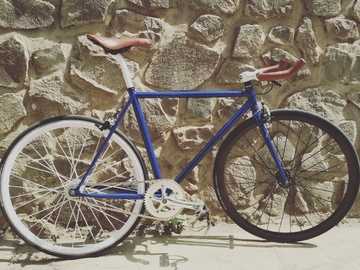 For Sale: Fixie for sale